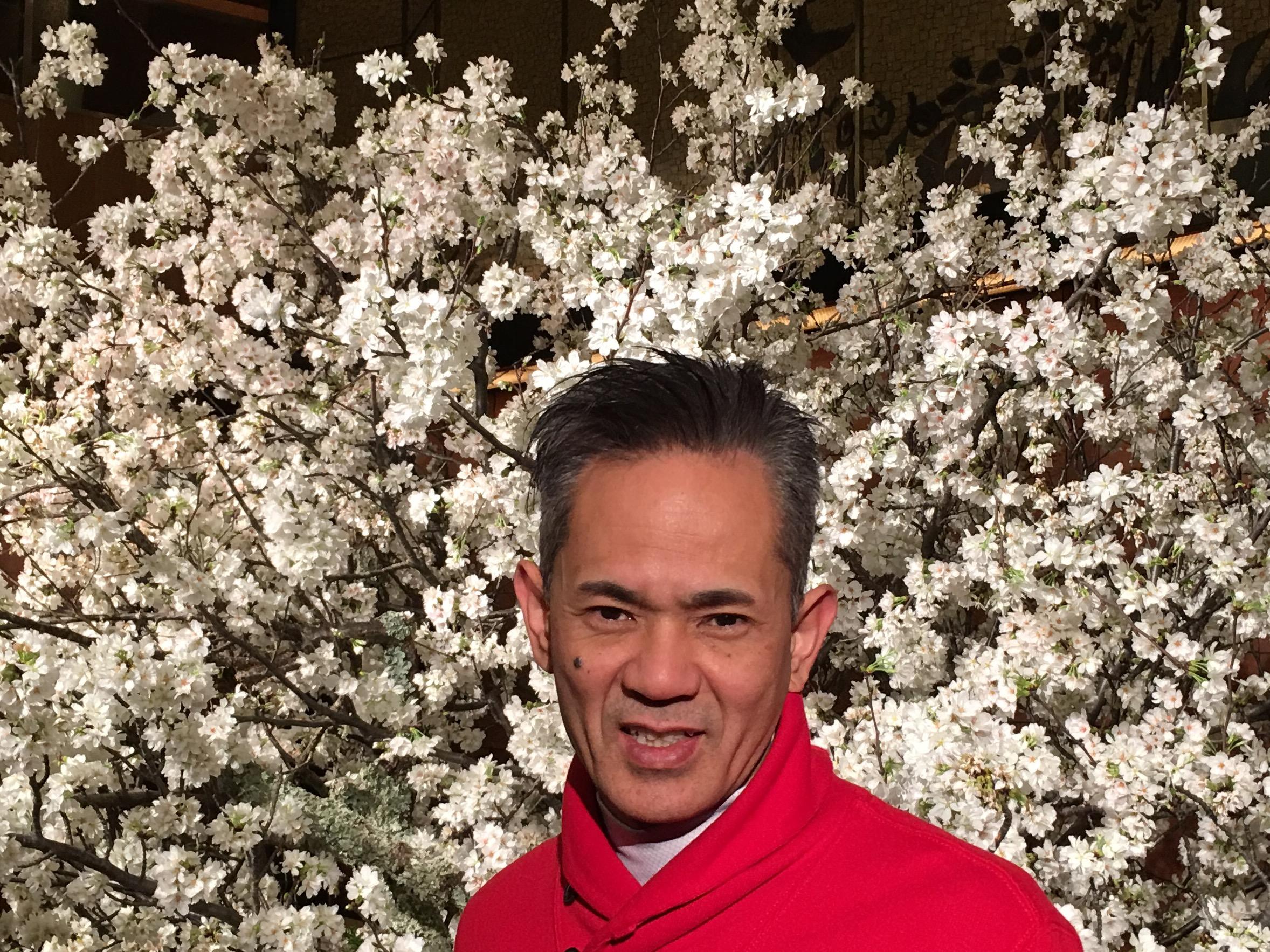 今日は 2冊目の出版取材でした。 大きな骨格もでき  いよいよです。 東京は美しい桜の季節?です。 写メは、ホテルのエントランスにあった吉野桜? 百花繚乱  溢れるエネルギーいっぱいにうけて