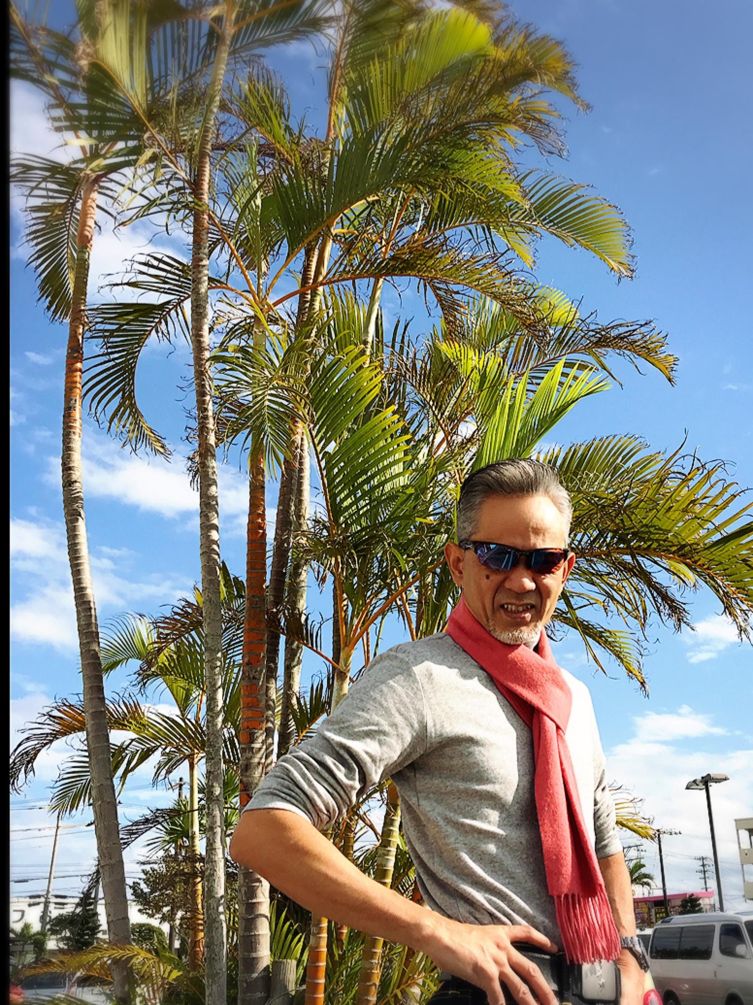 ここ沖縄の  短い冬 沖縄の冬は曇り空が多くて 風がとにかく強い 久しぶりの晴天‼️ やっぱり太陽☀️がでると 南国?です。